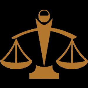 Avocat droit pénal, droit de la famille, droit du travail à Lyon : Me Bertholet